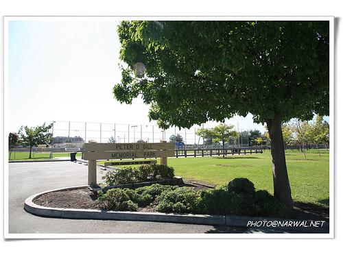 Softball park